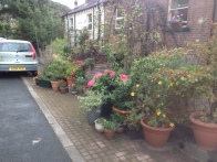 Planting on pavement: Hebden Bridge